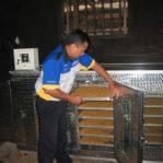Usaha Pembuatan Marning Jagung dan Emping Jagung Di Wonogiri Jateng
